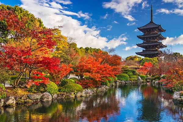 Best time to go Japan